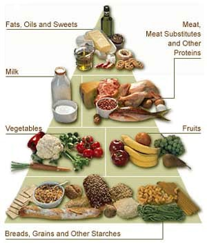 Diabetes Type 2 And Obesity